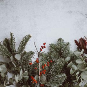 Music-Producer-Christmas-Sales-2019
